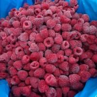 IQF Raspberry/frozen raspberries/raspberry/frozen fruits 250gr