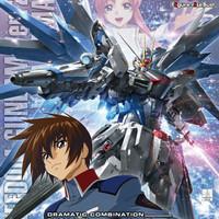 Bandai MG 1/100 Freedom Gundam ver 2.0 + figure risebust kira yamato