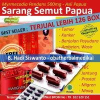 Obat Herbal Jantung, Batu Ginjal, Maag, Ambeien Sarang Semut Papua