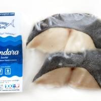 Ikan GINDARA Segar/Fresh Fish/Fillet Seafood/Ekspor/Murah Bkn Tongkol