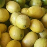lemon lokal