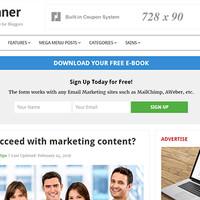 Beginner Wordpress Theme by Theme Junkie