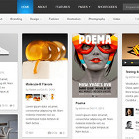 Pinable Wordpress Theme by Theme Junkie