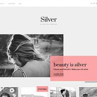 Silver Wordpress Theme by Theme Junkie