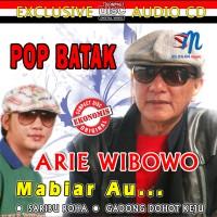 [CD] ALBUM POP BATAK Arie Wibowo