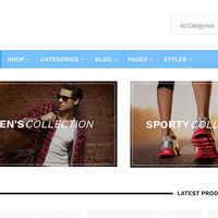 Roku Wordpress Theme by Theme Junkie