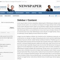 Newspaper Wordpress Theme by Theme Junkie