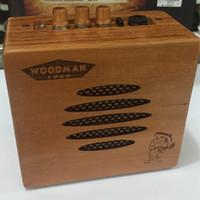 Speaker amplifier gitar Akustik Woodman