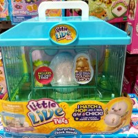 Little Live Pets Surprise Chick House / Mainan Anak Ayam