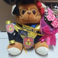 boneka wisuda teddy bear coklat kacamata lengkap 27cm