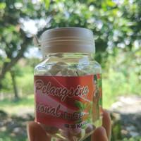 Harga jamu pelangsing | Pembandingharga.com