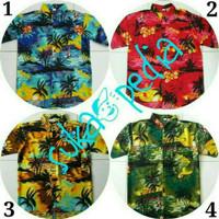 BAJU PANTAI/BEACH/HAWAI/BALI XXXLL