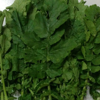 Daun Lobak Organic, aixin /250g