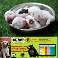 Dog & Cat Raw Food - Big Bone Calcium 700gr (Kalsium untuk Anjing)