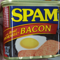 Spam | with real Hormel bacon | Hormel foods | 340 gram | long ex date