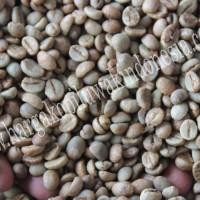 Jual Kopi Luwak Green Bean Malang Jawa Timur 500g Murah