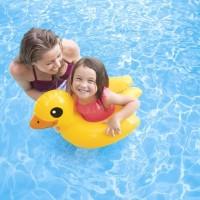 Ban Pelampung Bebek 64cmx64cm Animal Duck Split Ring - Intex 59220