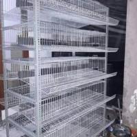 Kandang puyuh dan ayam petelur dari kaewat galvanis