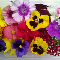 Mix edible flower