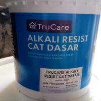 Asian paint sealer /Asian paint cat dasar /Asian paint truecare