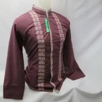 Baju Koko Pria Muslim Kemeja Lengan Panjang Bordir Tanah Abang LIT 052