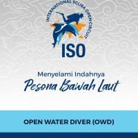 Dive ISO Open Water Course (OWD Certification)