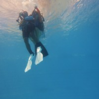 Dive ISO Rescue Diver Course (RES Certification)