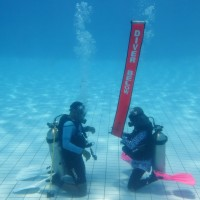 Dive ISO Dive Master Course (DMS Certification)