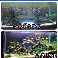 Jual Jasa Setting Design Dekor Aquarium Hias Aquascape 1 ...
