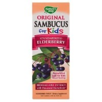 kualitas bagus Nature's Way, Original Sambucus For Kids, 240 ml