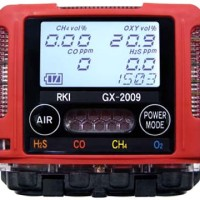 Multi Gas Detector RKI GX-2009