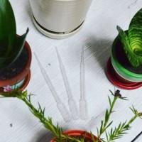 Pipet Tetes Penyiram Cactus, Succulent, dan Baby Plant