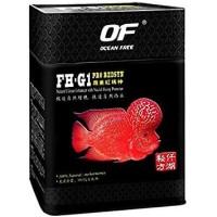 Harga Ikan Louhan DaftarHarga.Pw