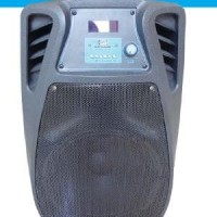 PORTABLE SOUND BLUETOOTH PA SYSTEM RECORD WAS-110 FV Promo