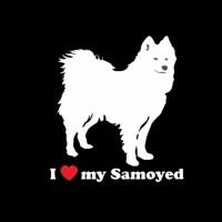 Stiker Mobil Motif Anjing Samoyed