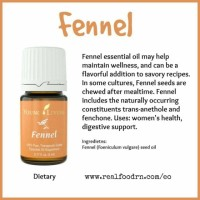Essential Oil Young Living Fennel