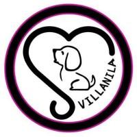 DOG FOOD/CAT FOOD/RAW FOOD/TURKEY- BARF/SUPPORT 4 SHELTER VILLANILA