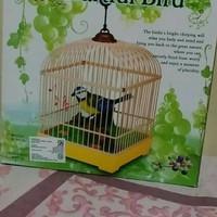 mainan burung dalam sangkar kotak