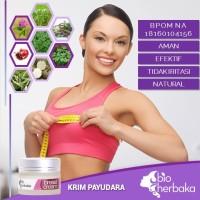 BIOHERBAKA BREAST CREAM I Cream Payudara, Pengencang & Pembesar