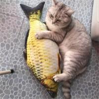 Boss Catfish Pillow 20 cm