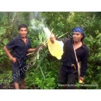 Harga Madu Nusantara Travelbon.com