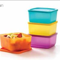 Jual Small Summer Fresh (4) Kotak Makan Tupperware e Murah