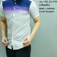 Baju Koko Modern Pria / Baju Muslim Lengan Pendek / Batik ODF161