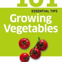 101 Essential Tips: Growing Vegetables ( Menanam Sayur / DK ) - eBook