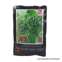 Discont Tanaman Kebun Benih Kangkung A7 New Day Seed