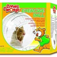 Mainan Roda bola Wheel puteran kincir Hamster marmut landak Gerbil