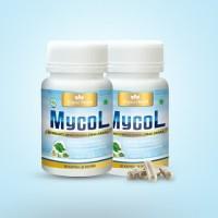 Obat Kolesterol Herbal - MYCOL - Obat Menurunkan Kolesterol