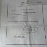 Benih Biji Sengon Solomon Jaguar Murah