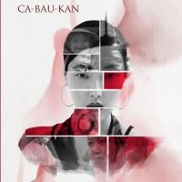 Buku Tionghoa dalam Novel Ca-Bau-Kan - Basabasi