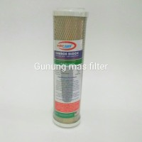 "Watercure CTO 10"" Antibacterial / Karbon Blok Antibacterial"